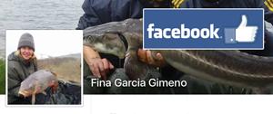 Fina Facebook