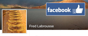 Fred Labrousse Facebook