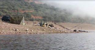 Barbos invernales en aguas de Cijara