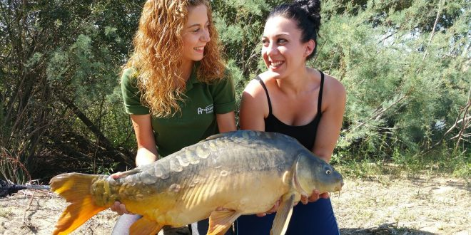 Ana Cillero carpfishing