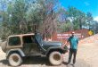 flinders-rangers