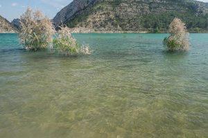 gabriel-pescar-aguas-claras