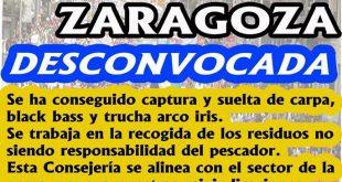 Manifestación de Zaragoza desconvocada