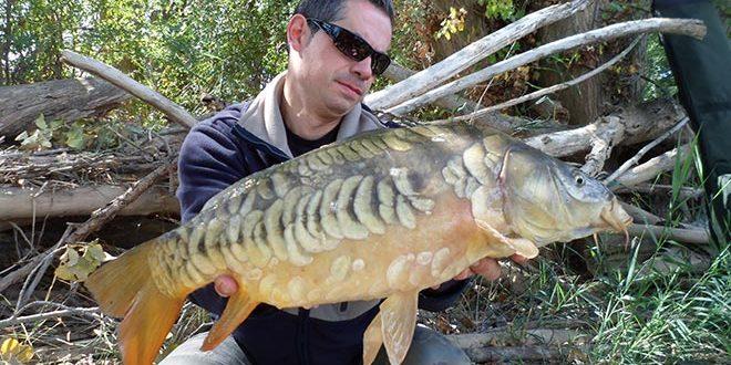 raul-vegas-rio-peces-salvajes