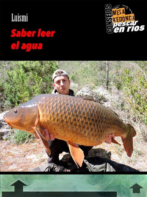 carpmag 26-mesa-redonda-pescar-rios
