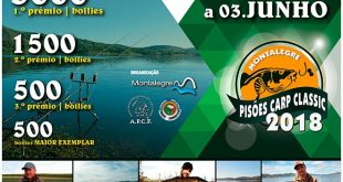 pisoes-carp-classic-portugal